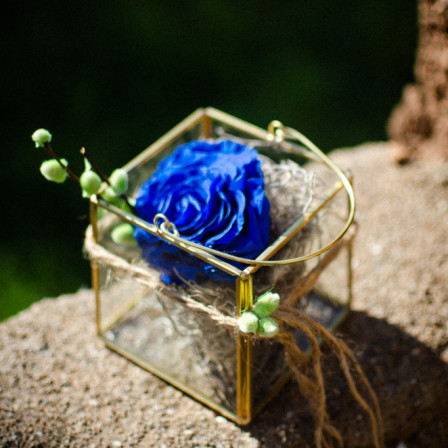 FOR EVER ROSE BLUE IN PRISMA GOLD OPEN